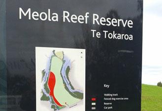 meola-reef-crop-u10007