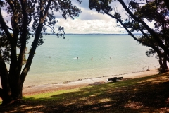 beachaday