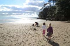 Pt-Chevalier-beachwalk